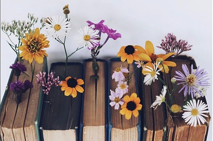 Wildflower Collective
