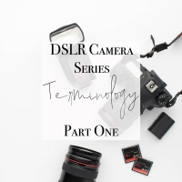 DSLR Camera: Beginner Tutorial
